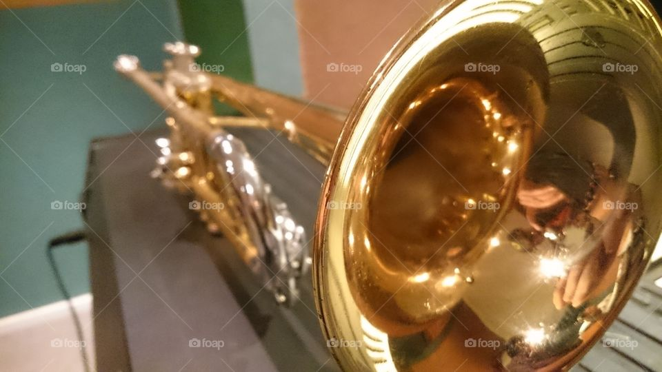The golden trumpet 🎺 . The brass hardware in its golden plated form.