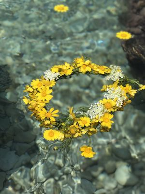 Yellow flowers wreath floating in water