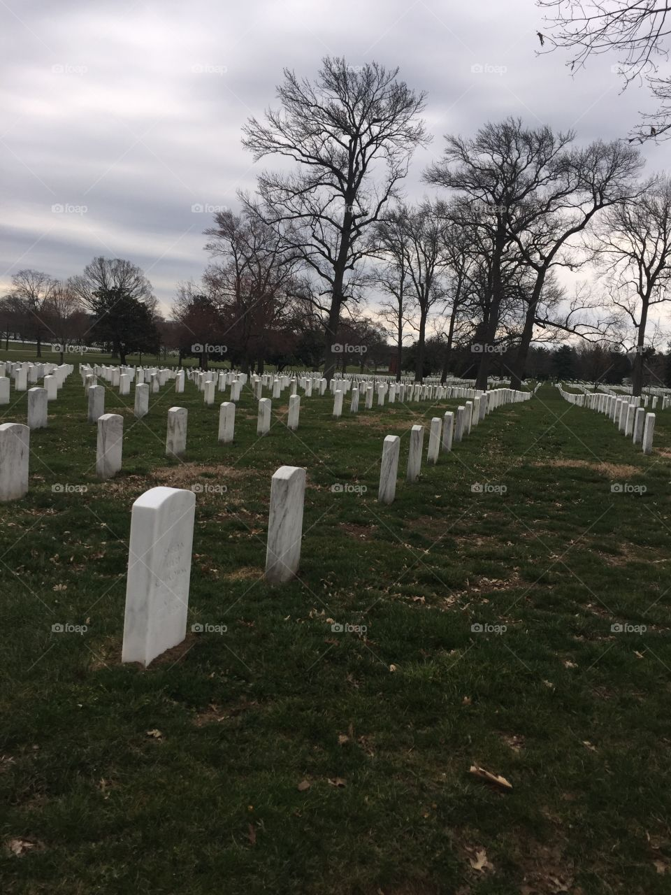 Memorable picture of Arlington cemetery honoring the fallen and those currently serving or have served.