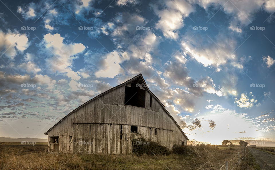 The Old Barn. Panoramic image of an old barn in Northern California.