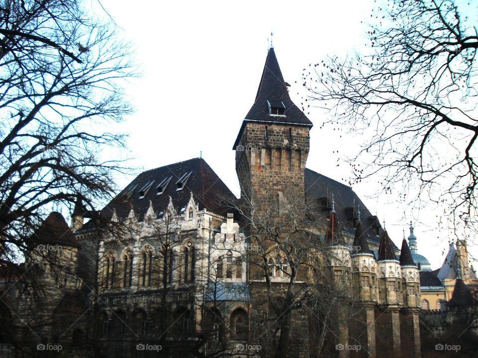 Vajdahunyad Budapest Castle