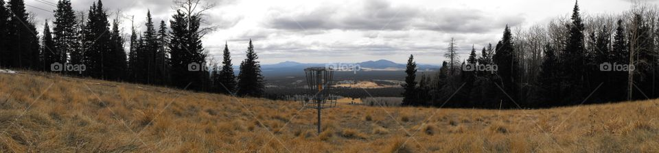 Disc golf in Arizona