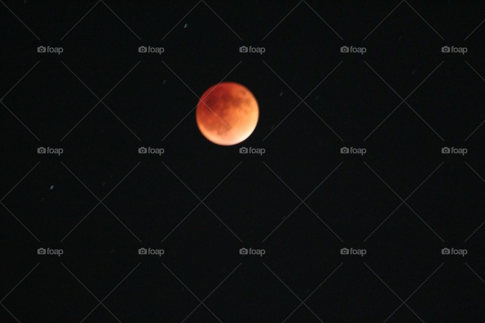 blood moon 2016