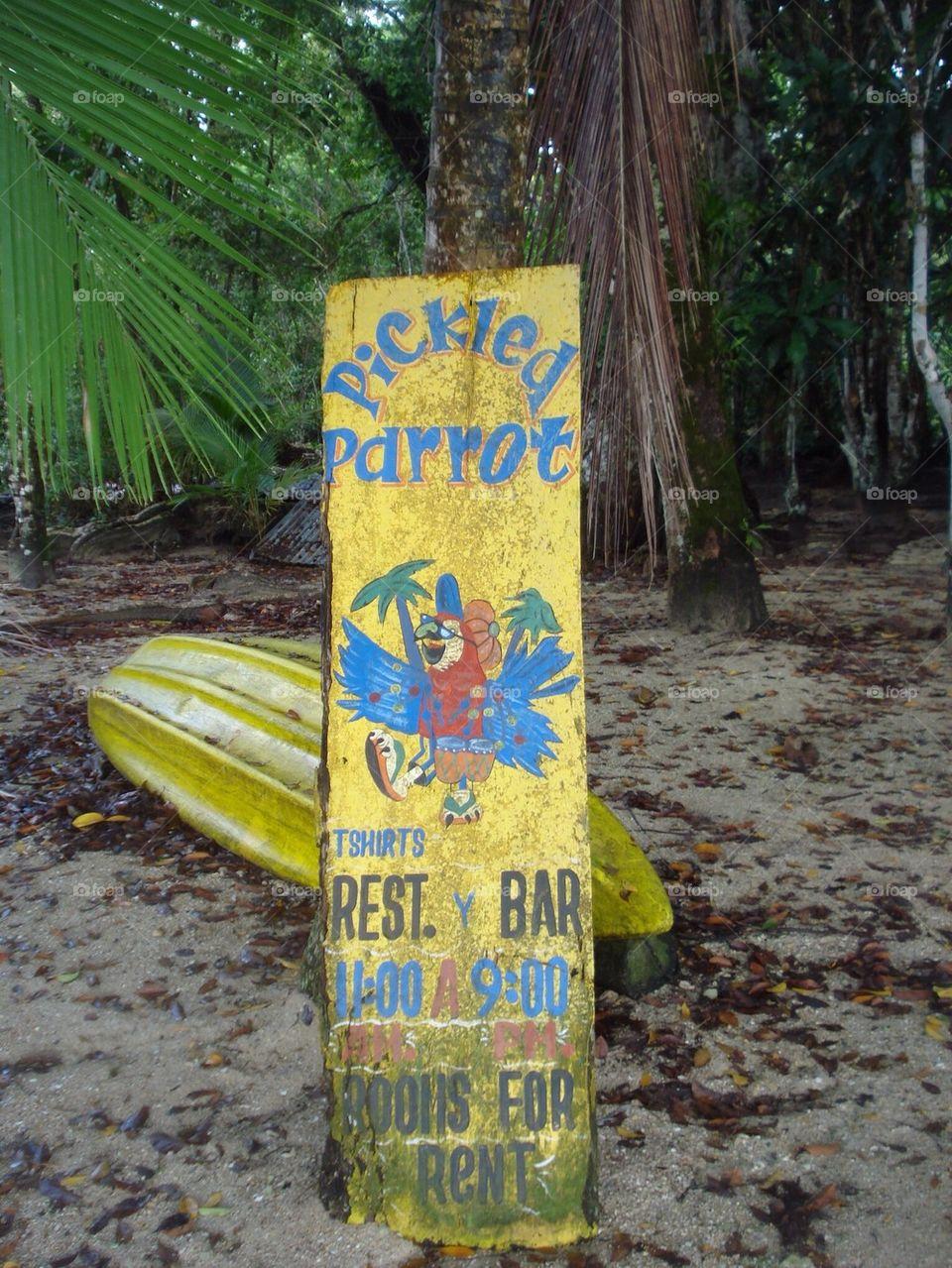 Surfers Paradise Island