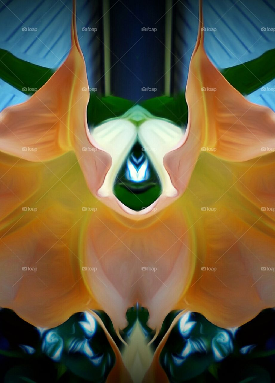 Angel Trumpets Flowers Abstract