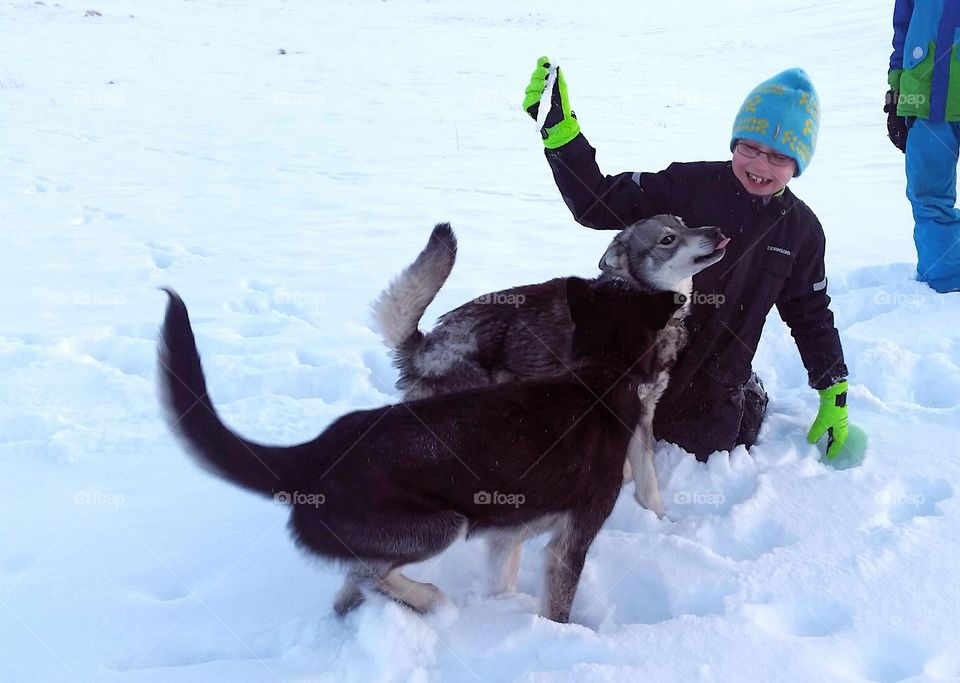 Child playing with two dogs in snow
