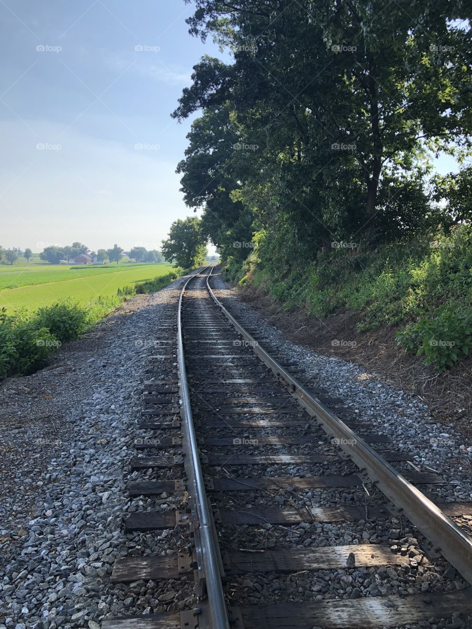 Looking down the tracks of the Strasburg Railroad toward East Strasburg. This picture was taken from the Blackhorse Road grade crossing, otherwise known as Carpenter's Crossing.