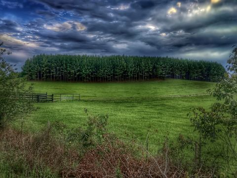 Grassy land against storm clouds