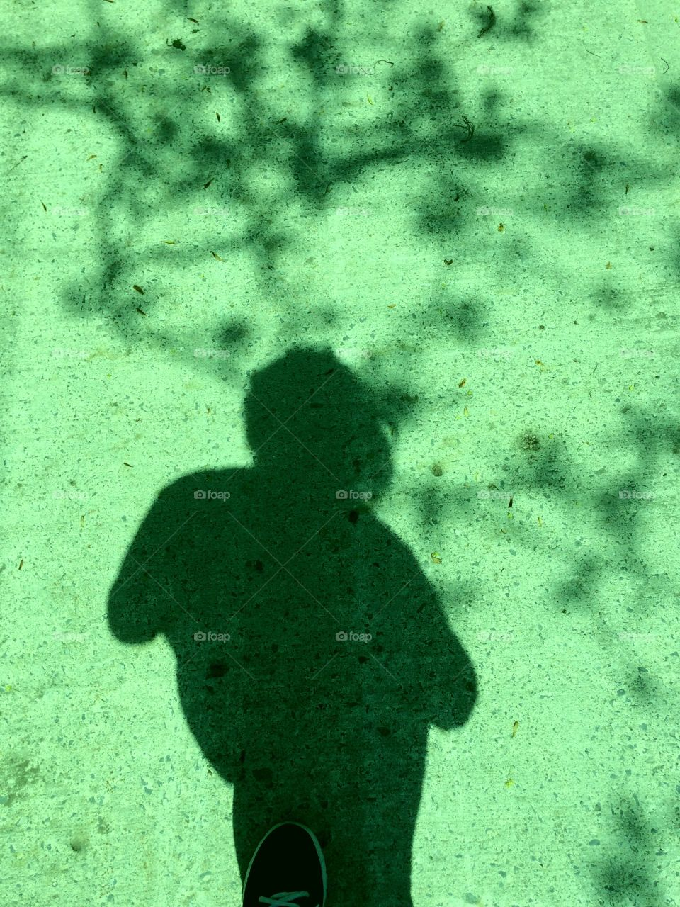 Green colour story  Shadows