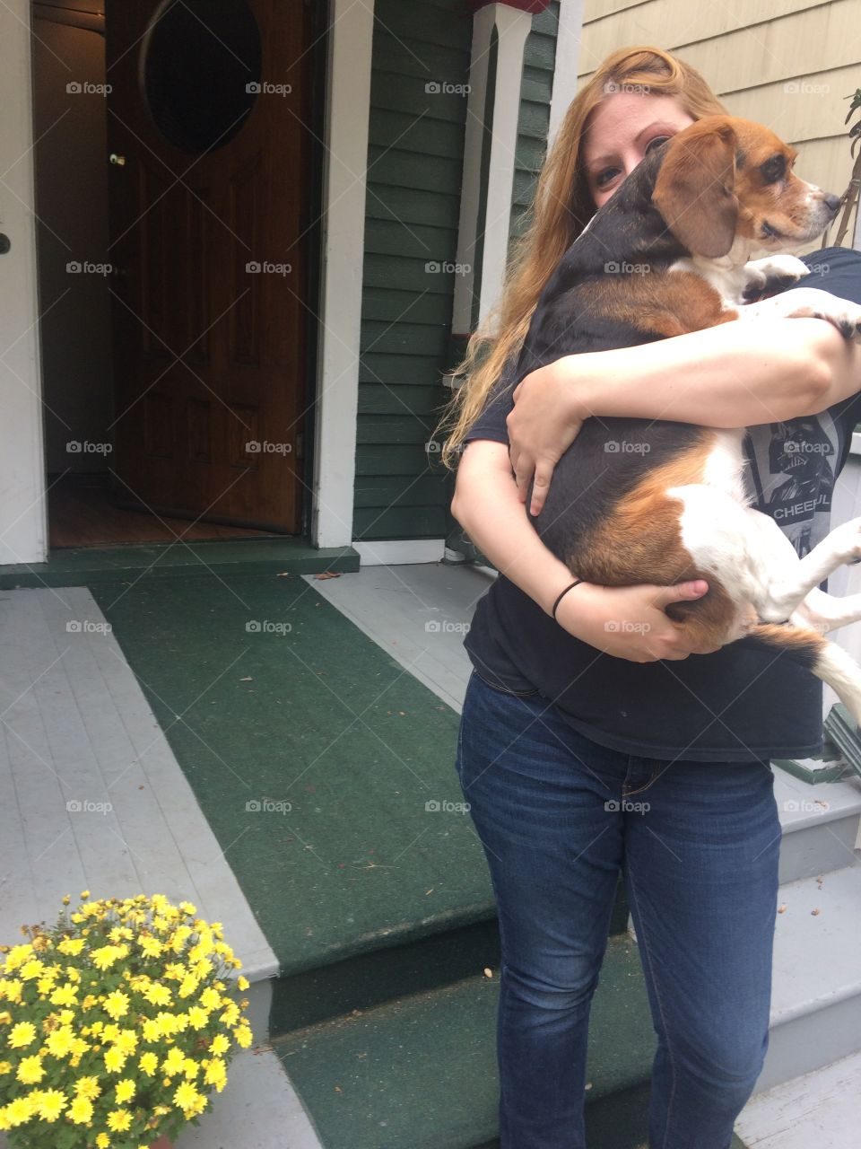 Cute and happy beagle dog being held by woman on a porch.