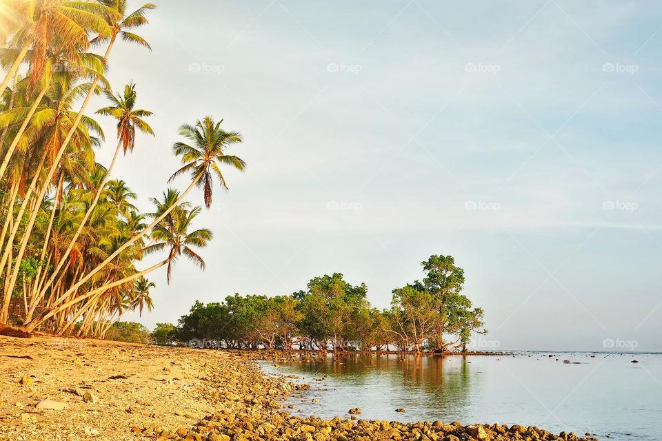 Island beach in the morning