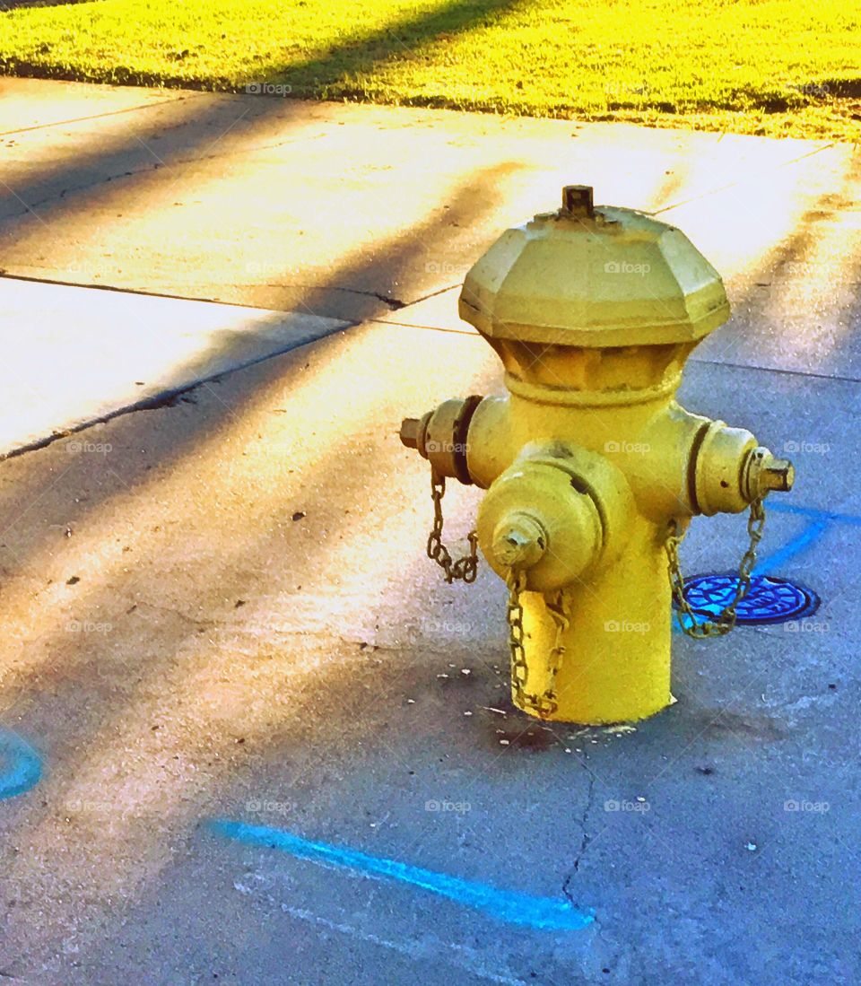 The Fire Hydrant