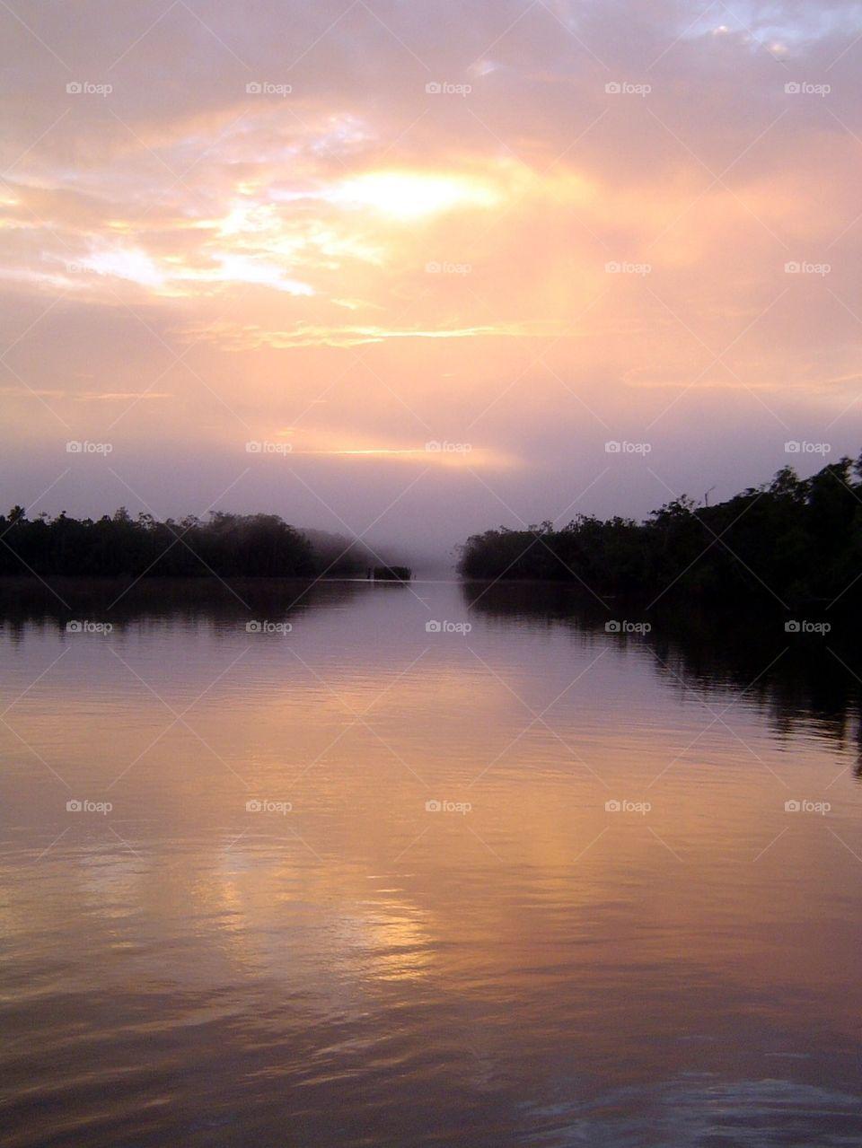 Tree reflecting on lake