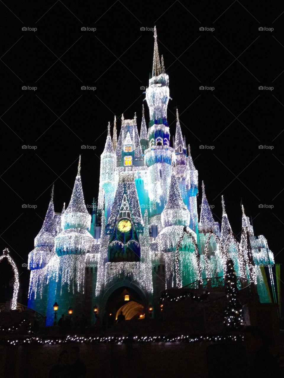 Walt Disney World Holiday Lights