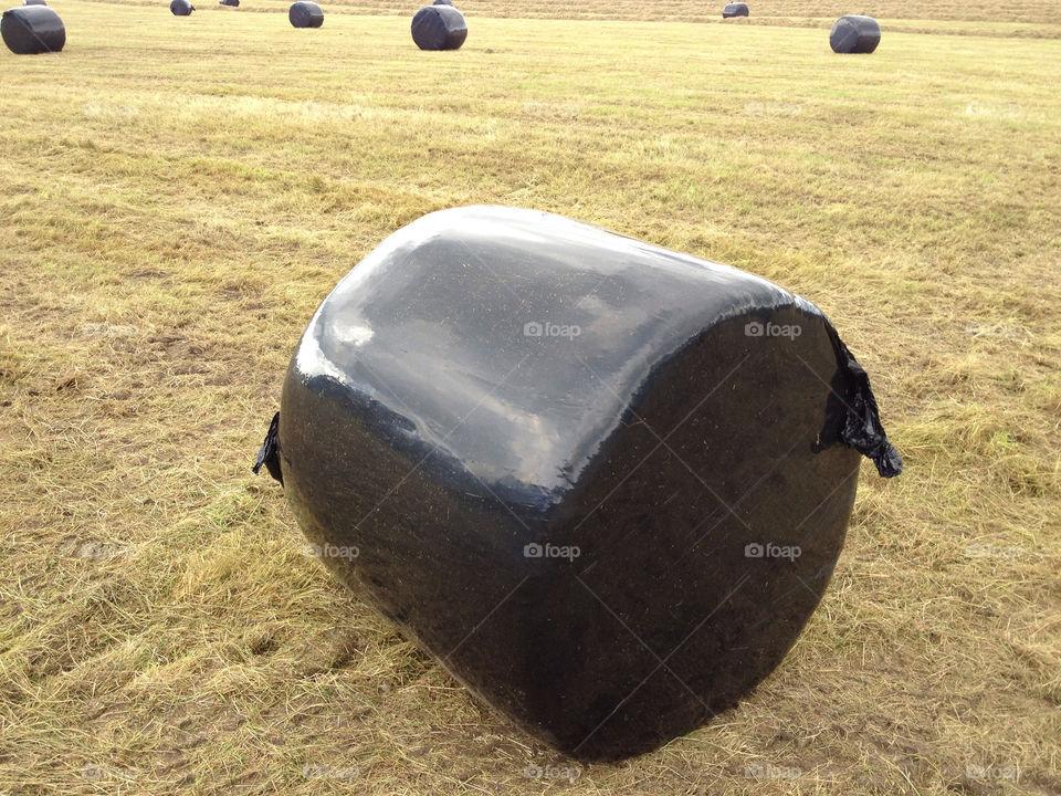 ireland farm harvest bales by freetommy