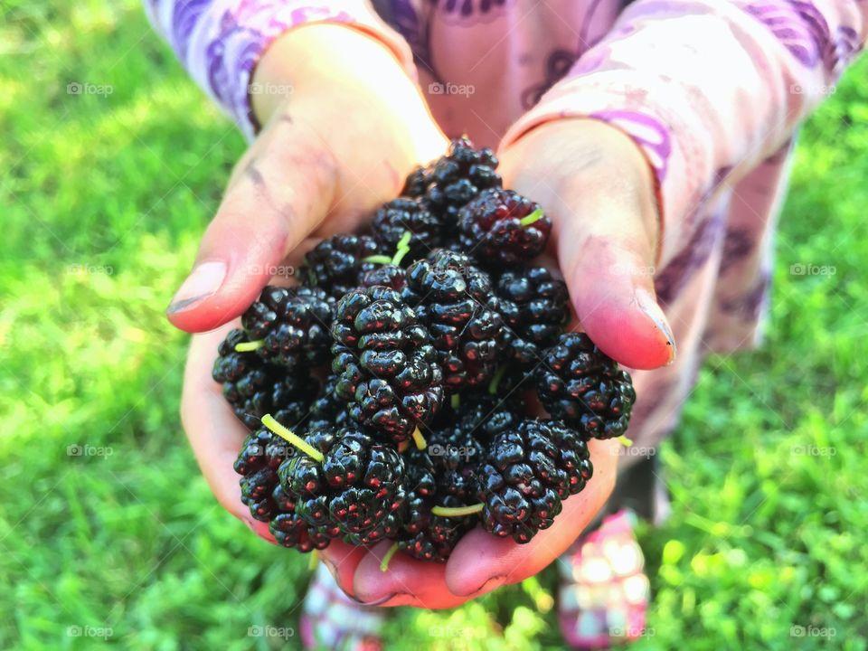 Handful of Berries