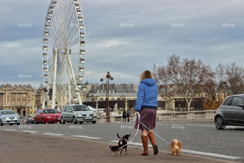 Woman walks in the city  with her three dogs