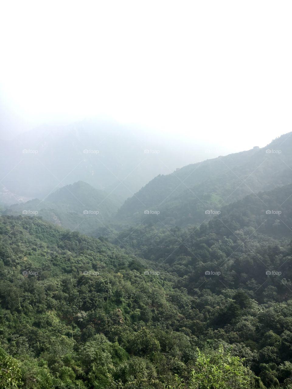 Nature, Landscape, Mountain, Tree, Travel