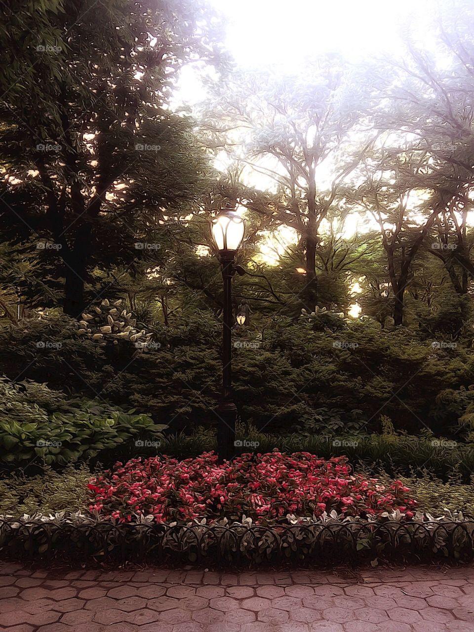 Olmsted Flower Bed - Central Park, New York City. Instagram,@PennyPeronto
