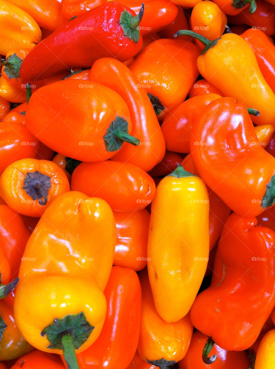 Spring peppers