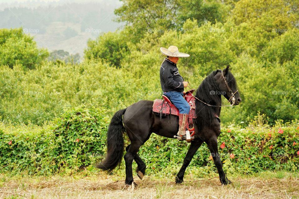 Mexican Cowboy Riding A Black Horse