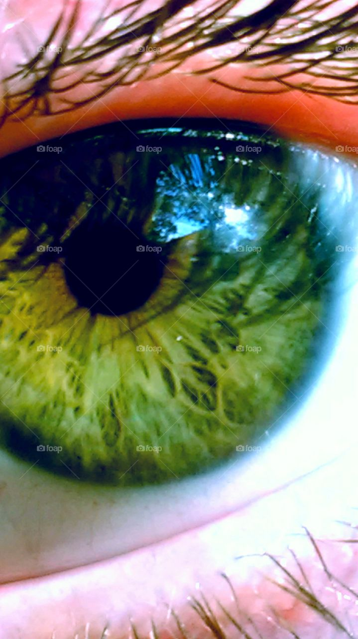 I was fooling around with my camera and captured this shot of my eye.