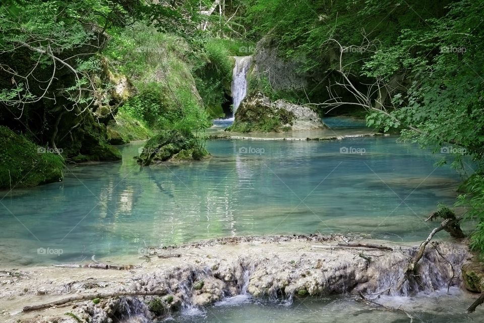 Pure water river in deep forest