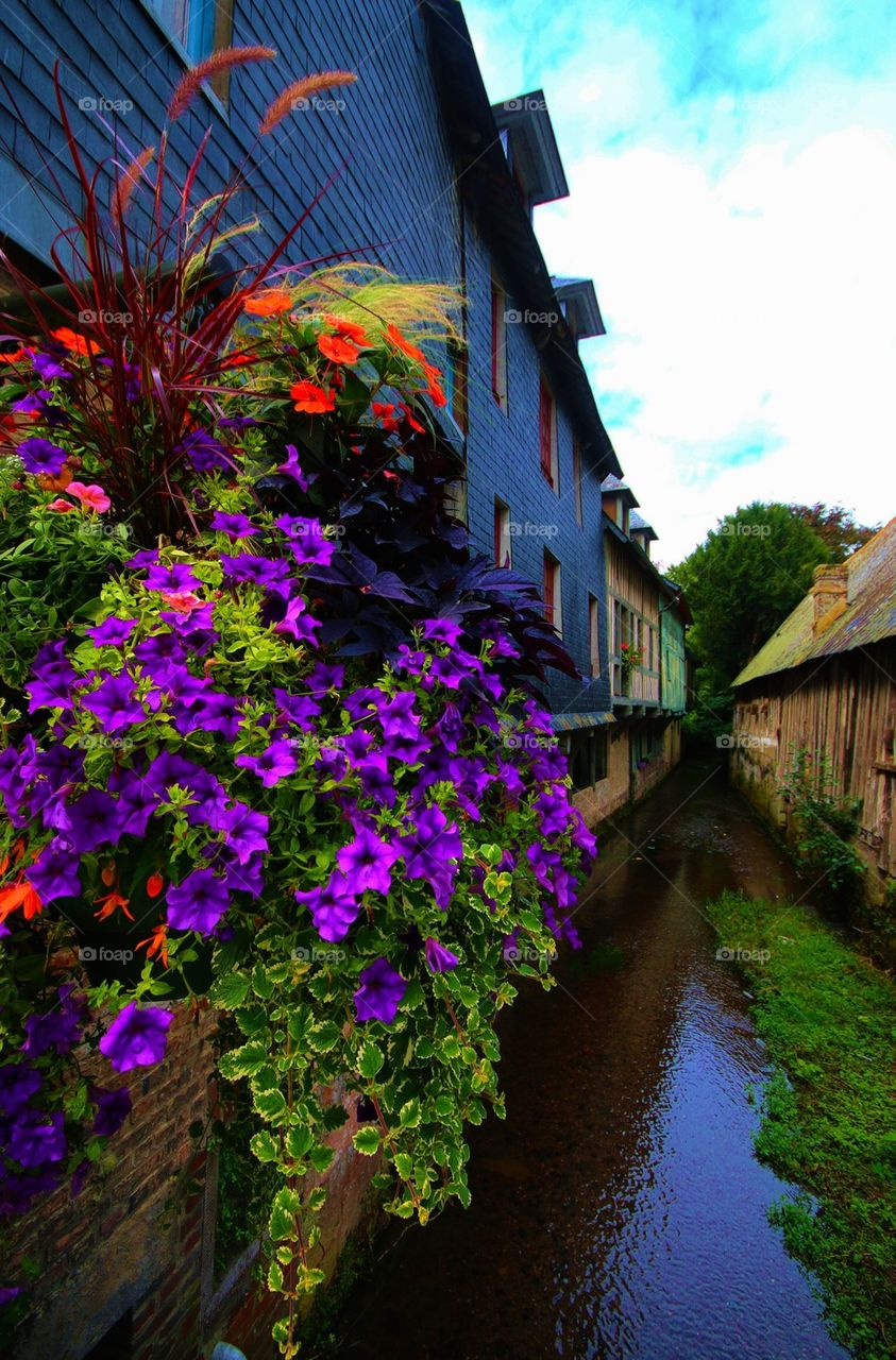 Flowers overlooking a town canal in Normandy