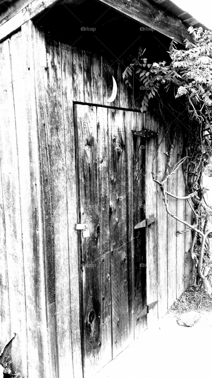 Shed some light. Beautifully old shed