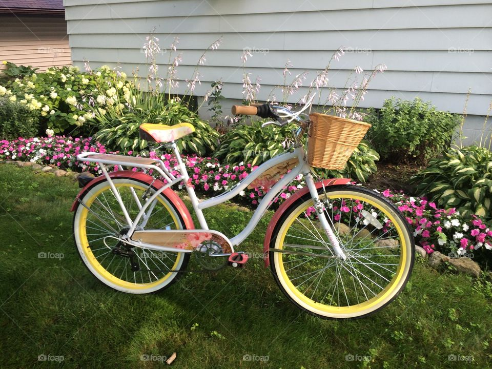 Bicycle on grassy land