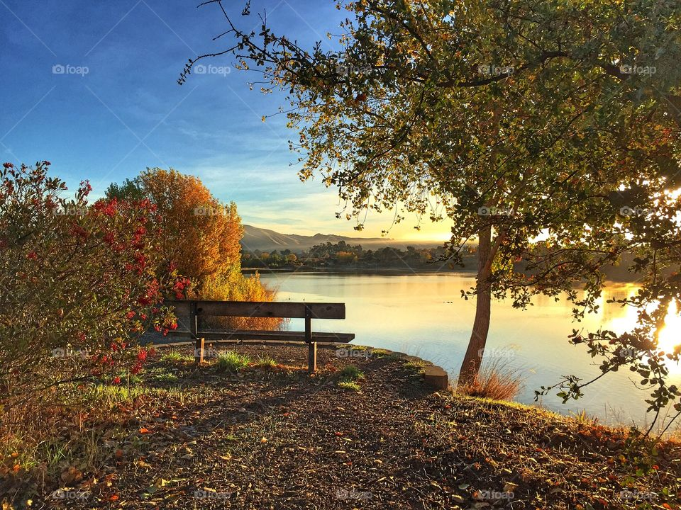 Scenic view of bench by lake