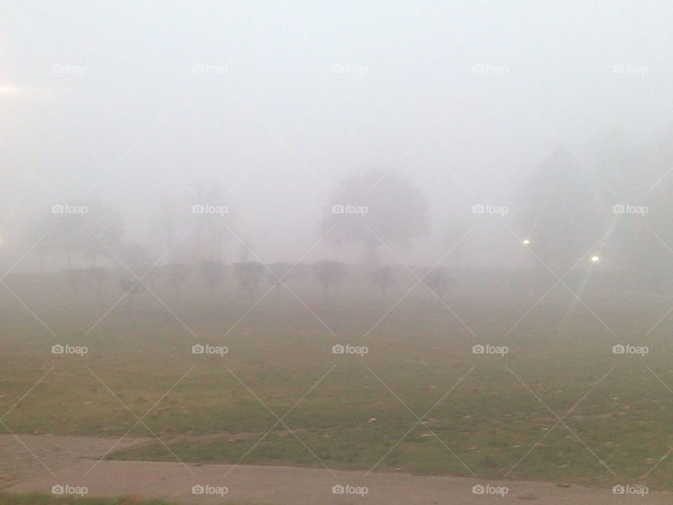 Fog, Landscape, Mist, Smoke, Storm