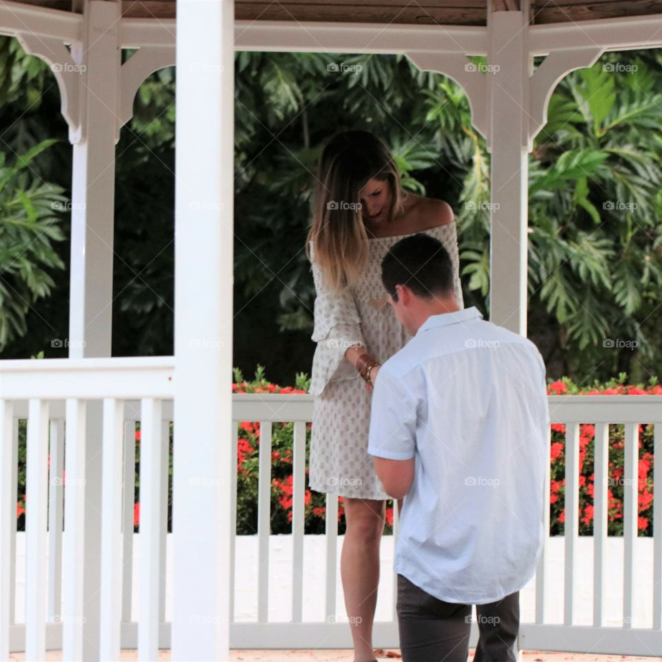 A beautiful summer engagement caught under a gazebo with gorgeous flowers and trees in background.  Weddings always remind me of summertime.