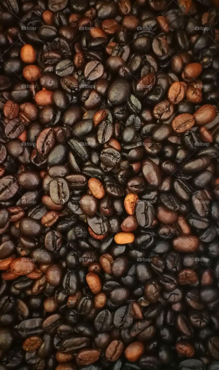 Thai coffee beans