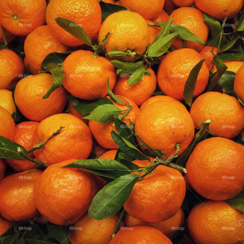 High angle view of orange fruits