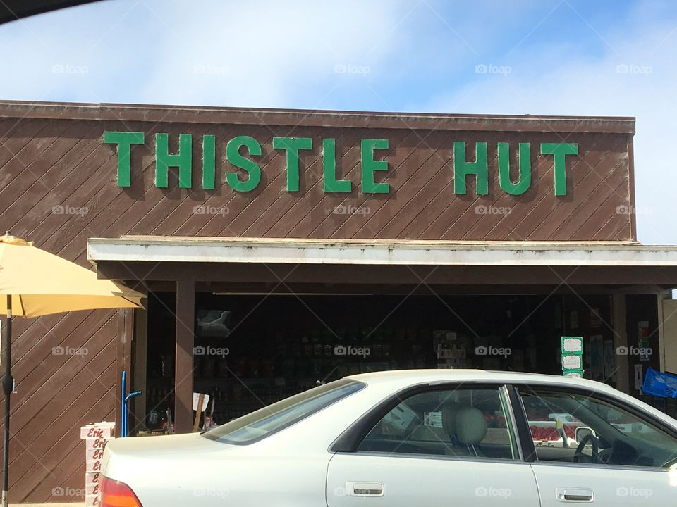 Welcome to the Thistle Hut