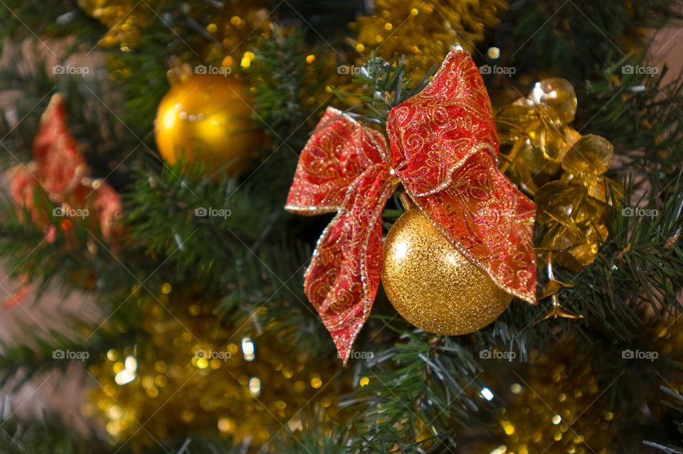 Christmas, Winter, Tree, Celebration, Gold