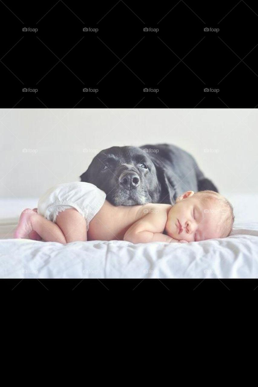 Precious protector
