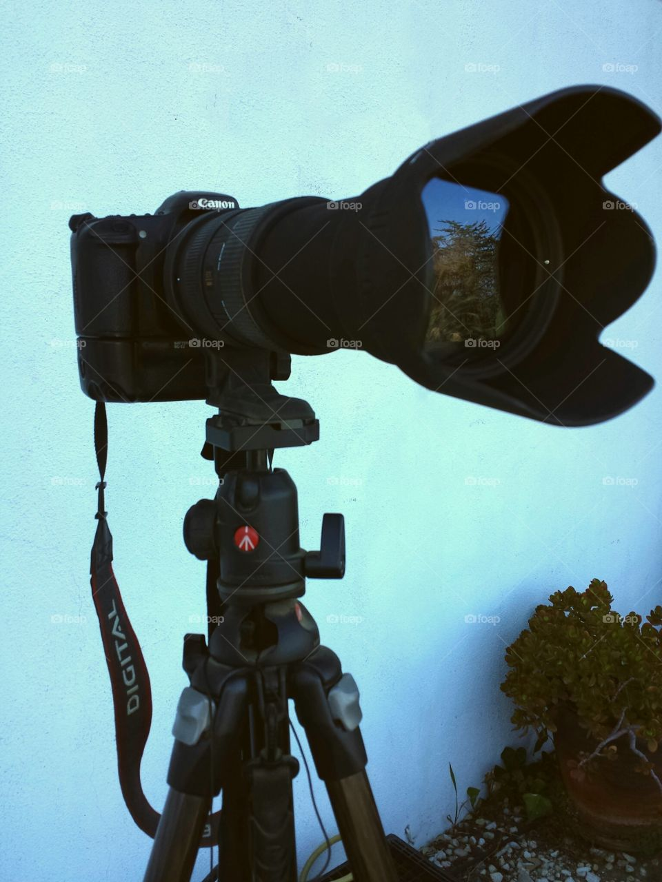 Canon with a telephoto lens on a Manfrotto tripod