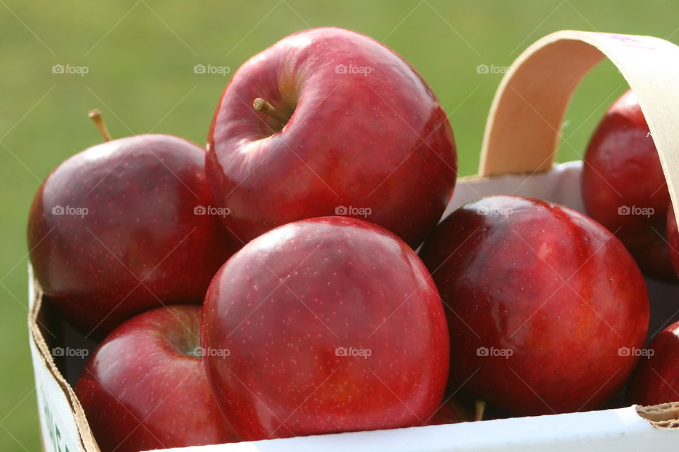 Close-up of basket of apples