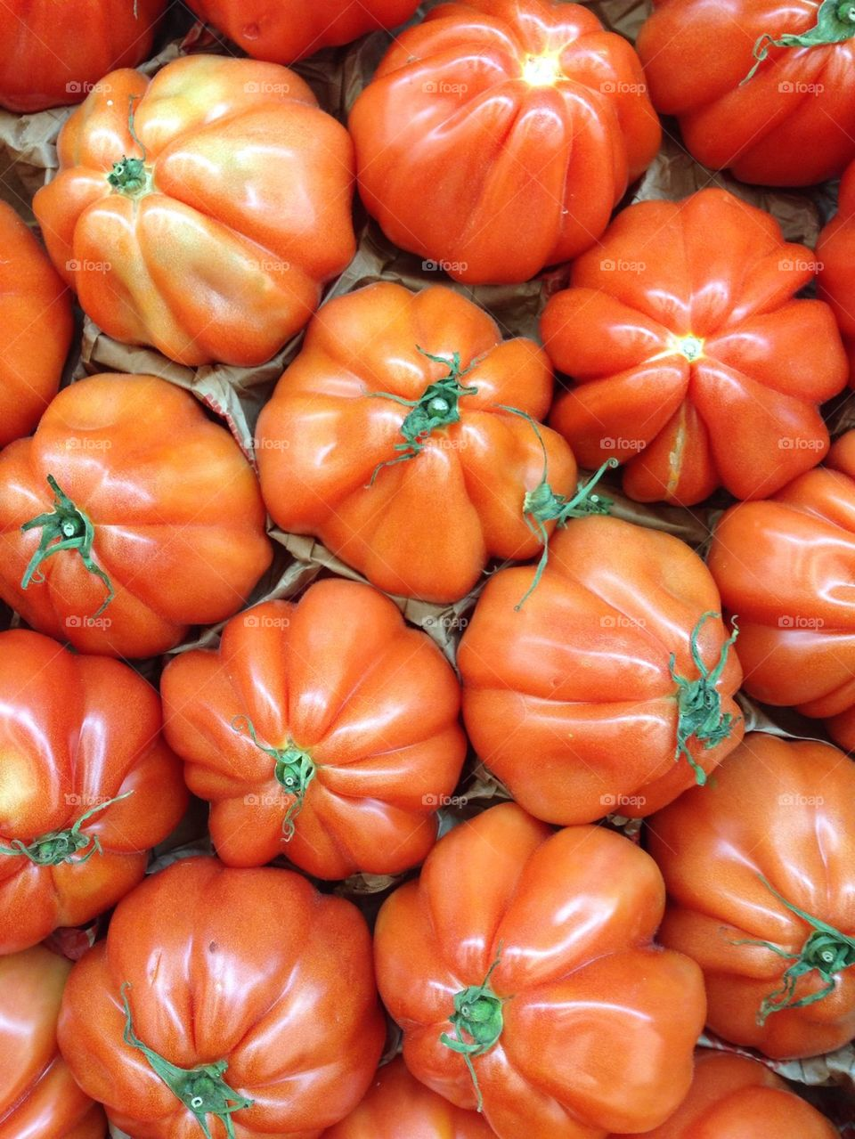 High angle view of tomatoes