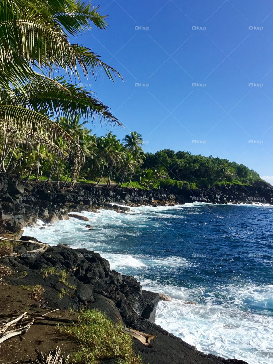 Sunny blue day on the ocean