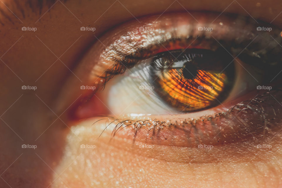 Close-up of reflection in brown eyes