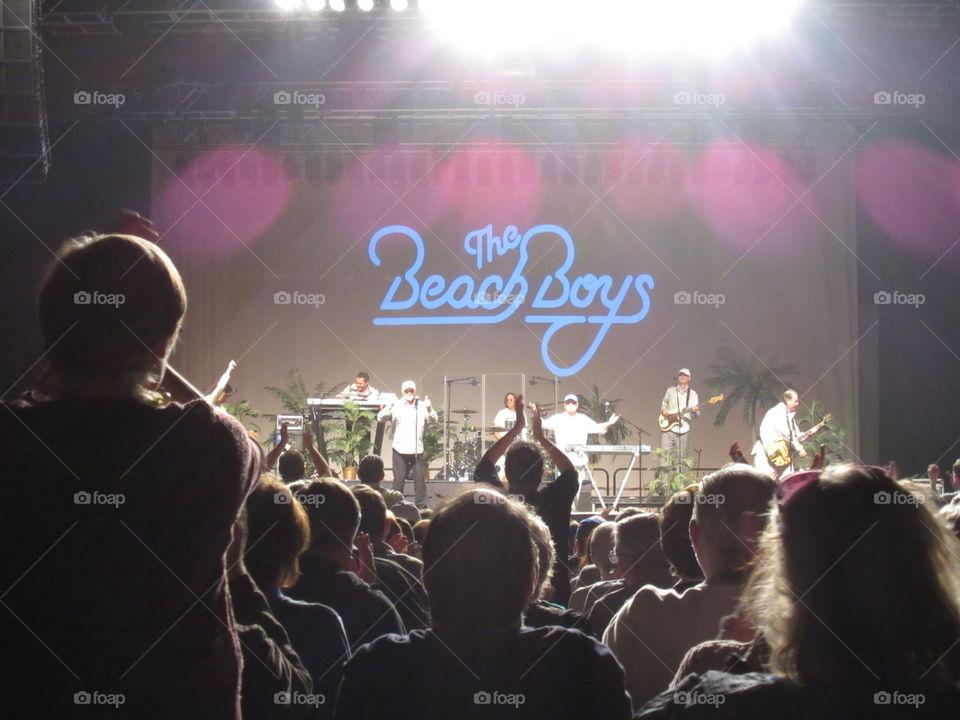 Beach Boys tour. The Beach Boys reunion tour. February, 2015