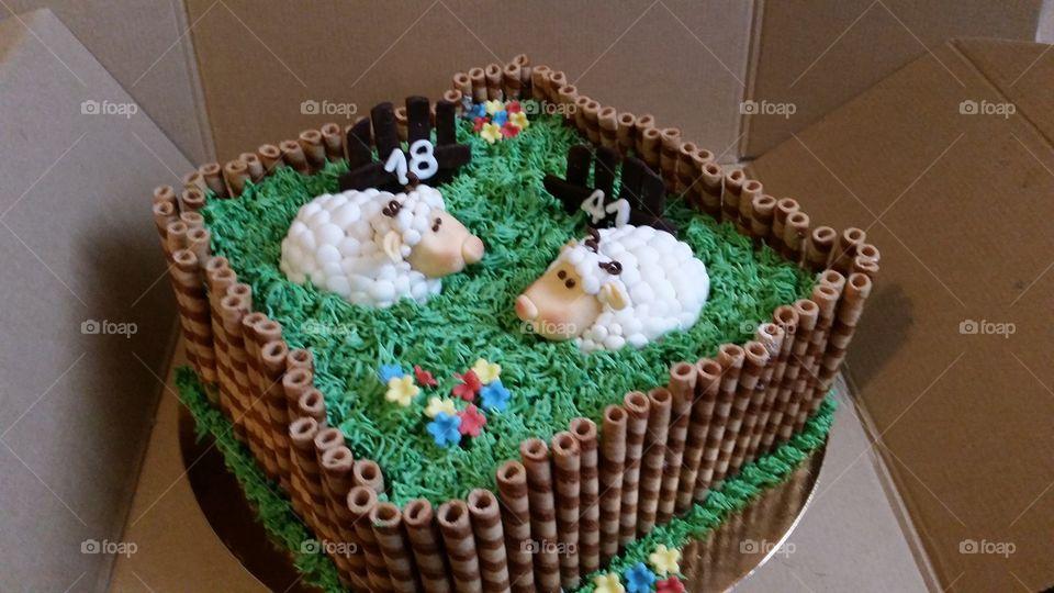 barani tort