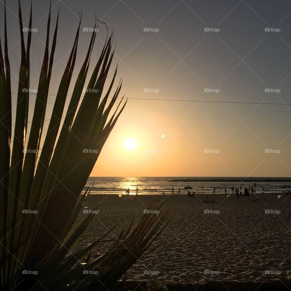 Sunset on Tel Aviv Beach