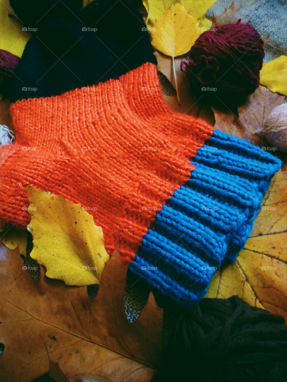 knitted warm socks and autumn leaves