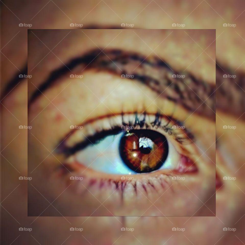 #browneye