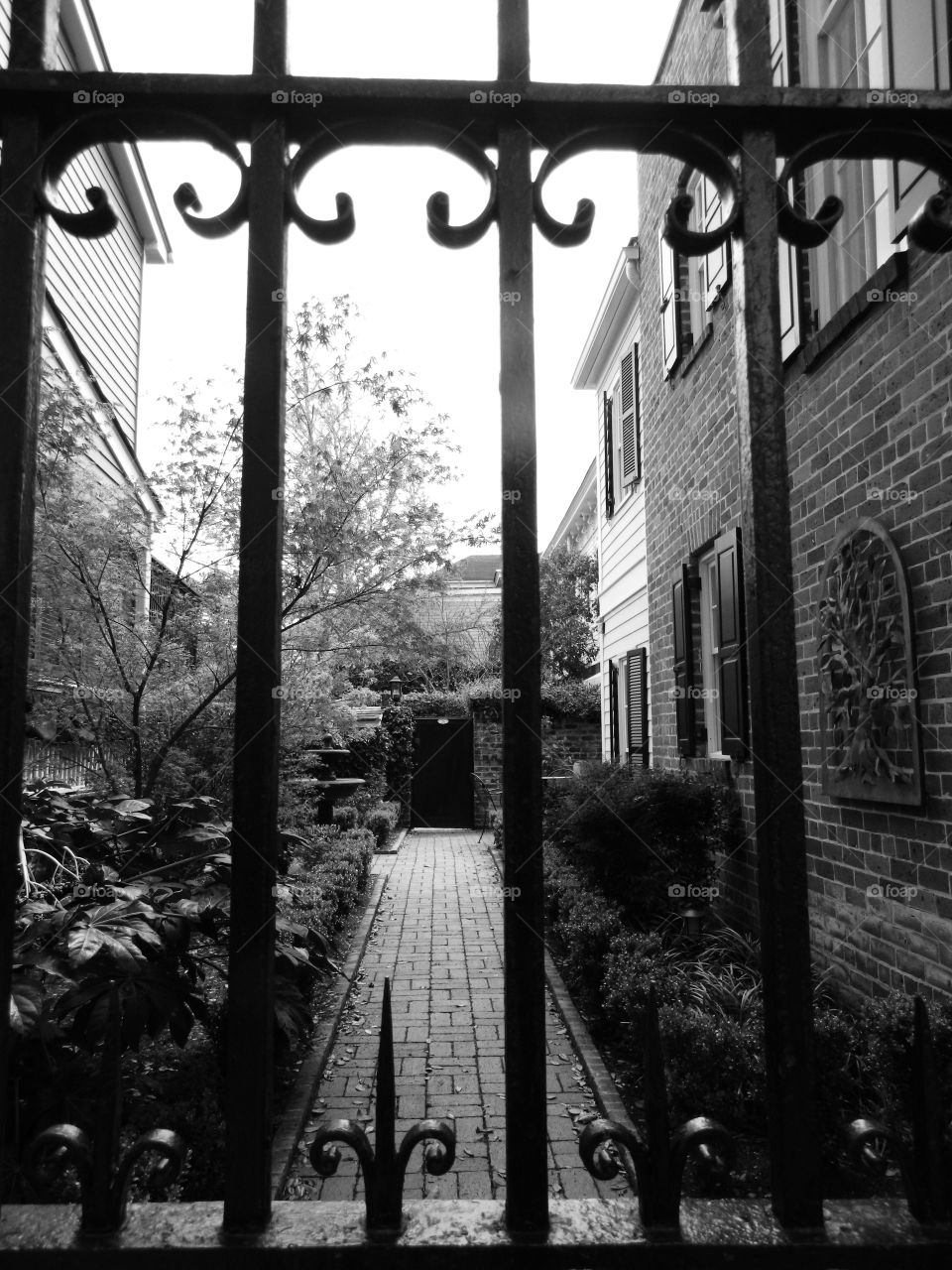 Happy Grey Story: Behind the iron gates! My Happy Grey Story photos shows cool, neutral,  and balanced color which              communicates some of the strength and mystery of black!