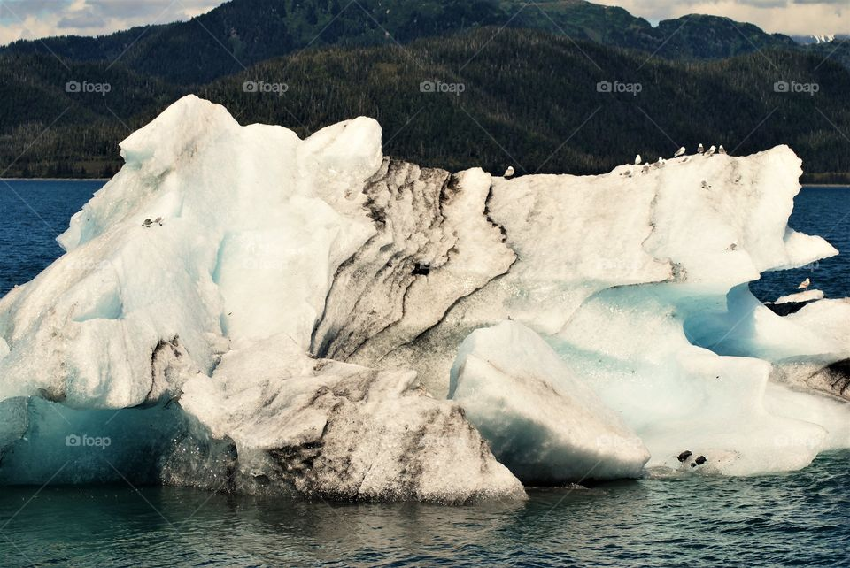 Sediment striations in glacial ice chunk